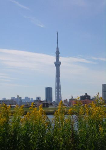 Arakawa6