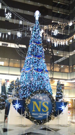 Ns_tree_2