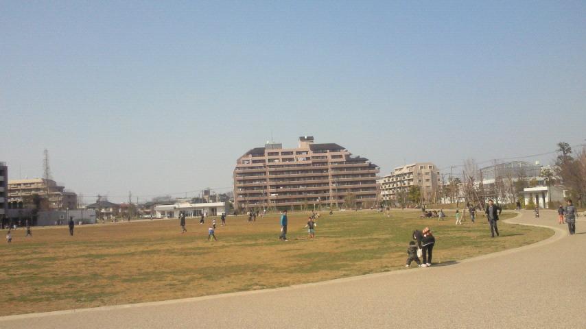 原っぱ公園