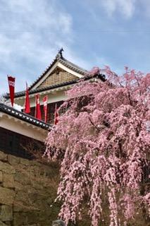上田城です