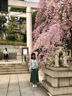 乃木神社です